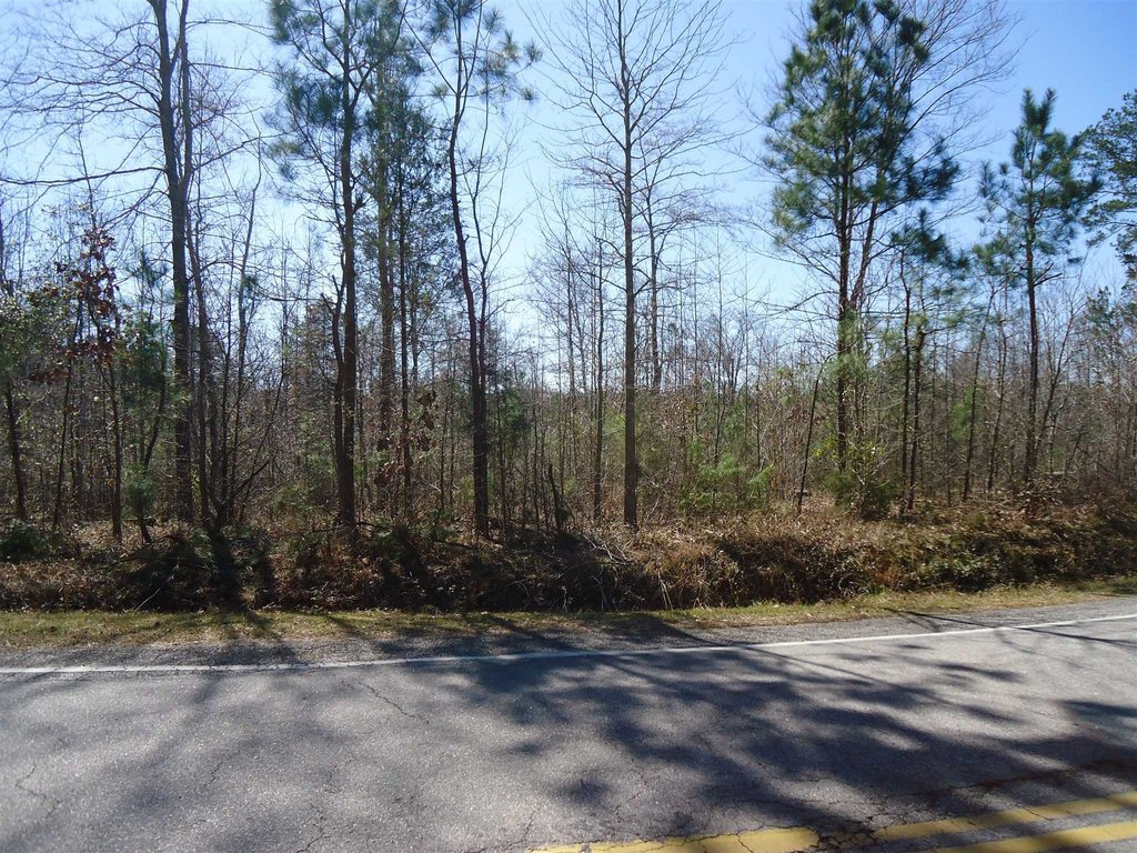 Photo of home for sale at TBD SMALLSTOWN Road, Winnsboro SC