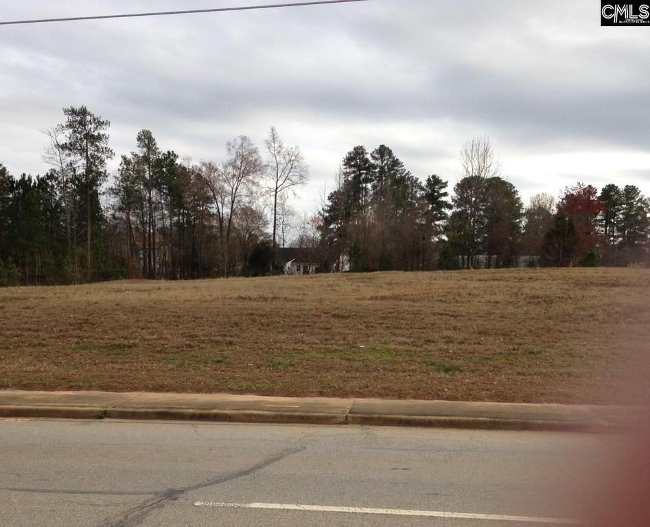 Photo of home for sale at 0 SC Hwy 219 Newberry Highway NW, Newberry SC